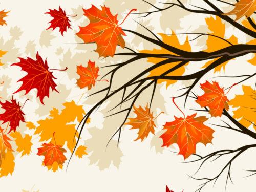 cartadaparatipersonalizzata.com: colora le tue pareti