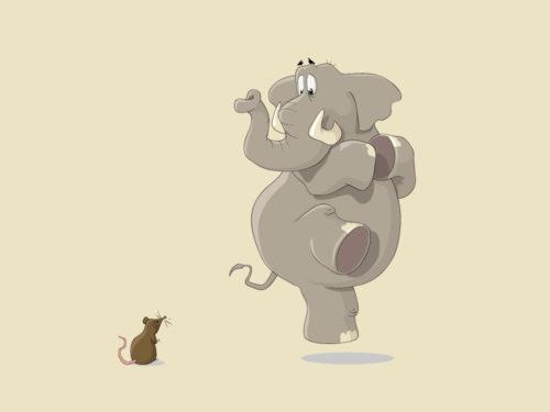 carta topino con elefante