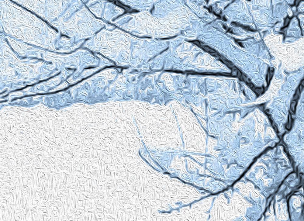 cartadaparatipersonalizzata.com-carta neve