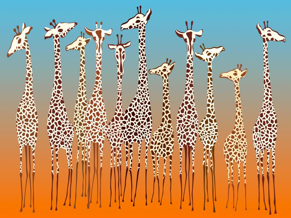 tante allegre giraffe colorate per la camera dei bambini